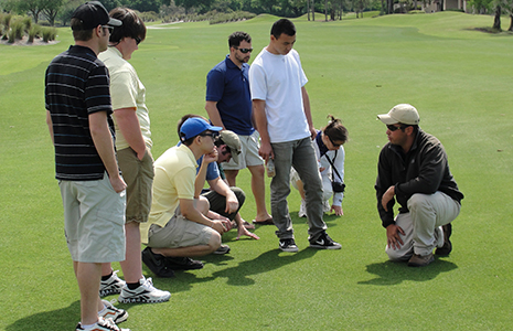 turfgrass science
